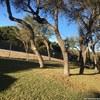 Mobile Home for Rent: Manufactured - Canyon Lake, TX, Canyon Lake, TX