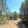 Mobile Home Lot for Sale: Residential/Mobile - Ash Fork, AZ, Ash Fork, AZ