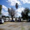RV Park/Campground for Sale: Lake Alamo Palms RV Park (Park Closed), Wenden, AZ