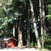 RV Park: View Crest Lodge, Trinidad, CA