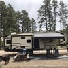 RV for Sale: 2019 REFLECTION