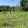 Mobile Home Lot for Sale: Agricultural,Mobile Home,Residential - Walterboro, SC, Walterboro, SC
