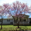 Mobile Home for Sale: Ranch, 1 story above ground, Manufactured Home - New Marshfield, OH, New Marshfield, OH