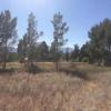 Mobile Home Lot for Sale: Manufactured Home - Cornville, AZ, Cornville, AZ