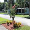 Mobile Home Park: Magnolia Village, Edgewater, FL