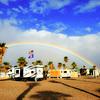 RV Park: Holiday Palms RV Park, Quartzsite, AZ