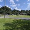 RV Park: Magnolia Trace RV, Zephyrhills, FL