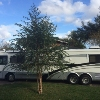 RV for Sale: 1999 Navigator 42
