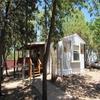 Mobile Home for Sale: Single Level,1st Level, Manufactured/Mobile - Pinetop, AZ, Pinetop-Lakeside, AZ