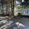 RV Park for Sale: Elk Country RV Resort & Campground, Trinidad, CA