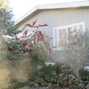 Mobile Home for Sale: River Place -  #99, Roseburg, OR