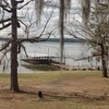 RV Park for Sale: Jackson Hill Marina and Park, , TX