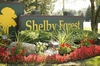 Mobile Home Park: Shelby Forest , Shelby Township, MI