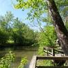 RV Park/Campground for Sale: #23615 High Tourist Destination Area!, ,