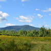 RV Park/Campground for Sale: 50 Acres Campground in NH Tourist Area!, , NH