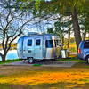 RV for Sale: 2018 SPORT BAMBI 16