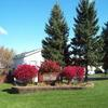 Mobile Home Park: Indian Trail North, Burtchville, MI