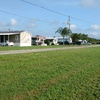 Mobile Home Park for Sale: Mobile Home Park plus 98 acres , Haines City, FL
