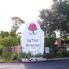 RV Park: Fig Tree RV Resort, Harlingen, TX