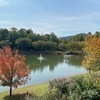 RV Lot for Rent: Lake Lure - North Carolina - Waterfront Lot, Lake Lure, NC