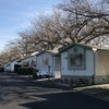 Mobile Home Park for Sale: New Orchard Mobile Home Park, Los Molinos, CA