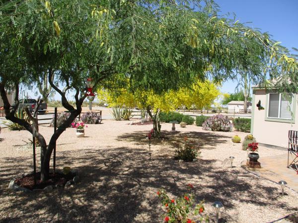 RV Lot for Sale in Florence, AZ: Desert Gardens RV Coop Lot F-88 For ...