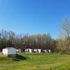 Mobile Home Park for Sale: Prewitt's MHP, Clarksville, TN