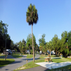 RV Park/Campground for Sale: RV Resort - Expansion Opportunity!, West Central Fl, FL