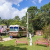 RV Park: Grizzly Pines Camprground, Navasota, TX