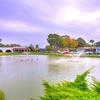 Mobile Home Park: Monte del Lago, Castroville, CA