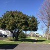 Mobile Home Lot for Rent: VACANT MOBILE HOME LOT FOR LEASE 16X78, Balch Springs, TX