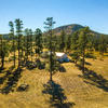 Mobile Home for Sale: Single Level, Manufactured - Williams, AZ, Williams, AZ