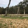 Mobile Home Lot for Sale: Mobile Home Allowed,Single Family, Other - Dittmer, MO, Dittmer, MO