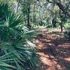 RV Lot for Sale: St Johns River Island Property, Georgetown, FL