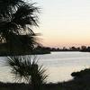 RV Park: Meadowlark Shores RV Park, Moore Haven, FL