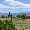RV Park for Sale: Grants/Cibola Sands KOA, Grants, NM