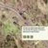 Mobile Home Lot for Sale: IN, UNDERWOOD - Land for sale., Underwood, IN