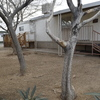 Mobile Home for Sale: FULLY REMODELED: 2 Bed / 1 Bath Mobile Home!, Ridgecrest, CA