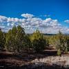 Mobile Home Lot for Sale: Residential/Mobile - Ash Fork, AZ, Ash Fork, AZ