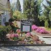 Mobile Home Park: McMinnville Manor MHP, Mc Minnville, OR