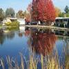 Mobile Home Park: Las Casitas De Sonoma, Rohnert Park, CA