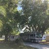 RV Lot for Rent: Mt Olive Shores, Polk City, FL