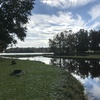 RV Park for Sale: Lakeview Campgrounds, ,
