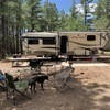 RV for Sale: 2019 Montana