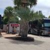RV Lot for Rent:  RV LOT RENTAL 109 W BRADLEY ST # 19, Miramar Beach, FL