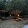 RV Lot for Rent: Wooded lot quiet setting Near Denton Solar power plant in Douglas Georgia, Douglas, GA
