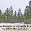 Mobile Home for Sale: MH w/land, 1 Story - Springdale, WA, Springdale, WA