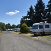 Mobile Home Park for Sale: Albany RV & Trailer Park , Albany, OR