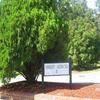Mobile Home Park: Ashley Arbor II  -  Directory, North Charleston, SC