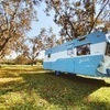 RV for Sale: 1956 300